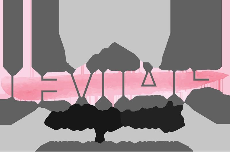 Levitate Weddings + Events